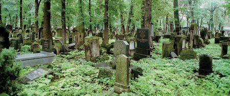 100610_grave_wide